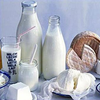 Сухое молоко и молочные наполнители
